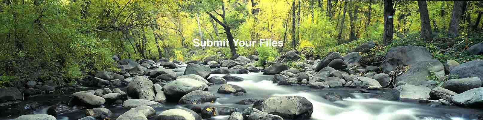 Submit your files