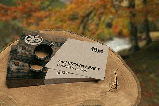Mini Brown Kraft Business Cards