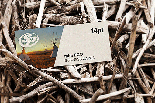 Mini ECO Business Cards