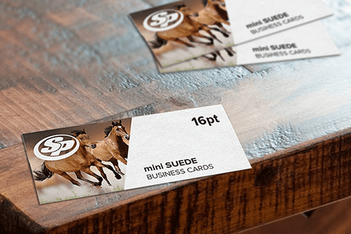 mini Suede  Business Cards