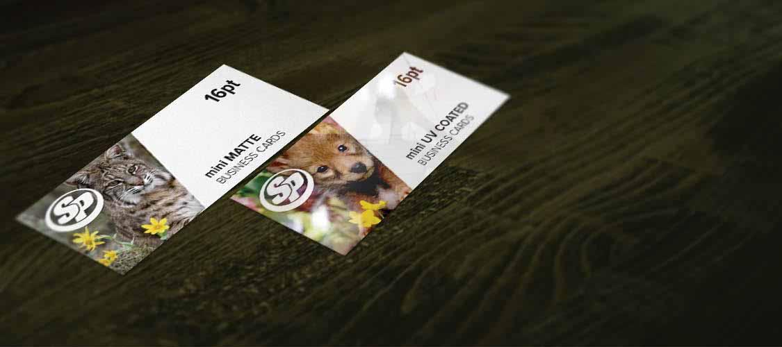 Mini Glossy & Matte Business Cards