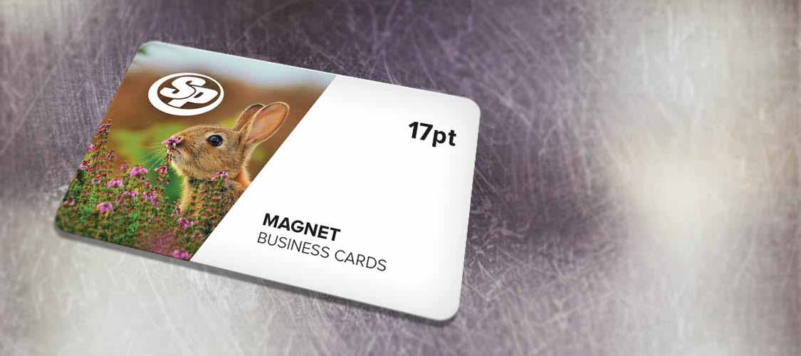 Business Card Magnets | Stigler Printing